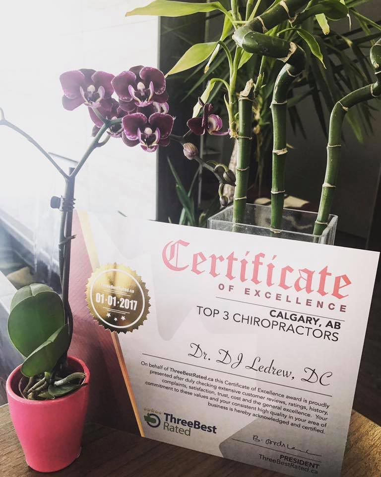 Chiropractic Calgary AB certificate of excellence